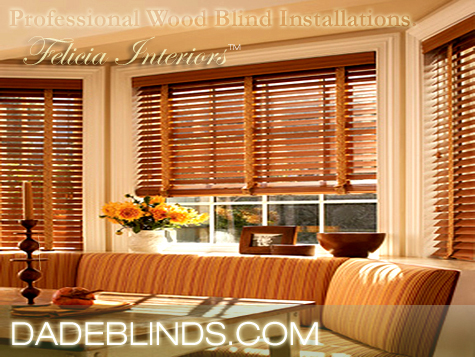 Miami Dade Verticales Cortinas [Felicia Interiors] House Residential Blinds Shades Drapes Vertical Blinds [Window Coverings][Window Treatment]